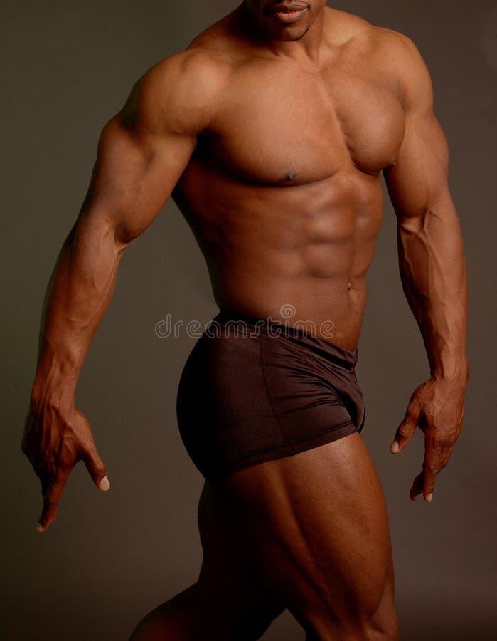 μαύρο αρσενικό στοκ εικόνες με δικαίωμα ελεύθερης χρήσης
