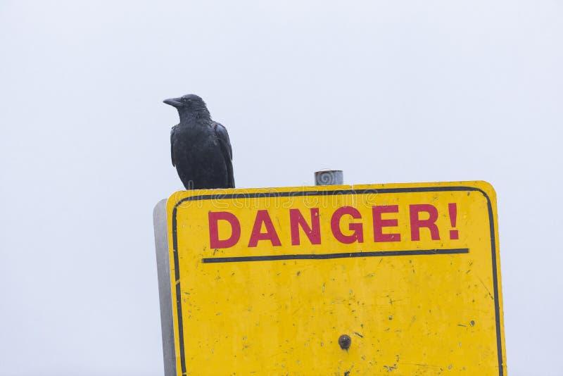 Μαύρο βέλος και προειδοποιητικό σήμα στοκ εικόνα