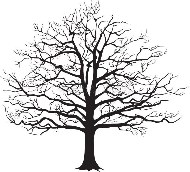 Μαύρο γυμνό δέντρο σκιαγραφιών επίσης corel σύρετε το διάνυσμα απεικόνισης διανυσματική απεικόνιση