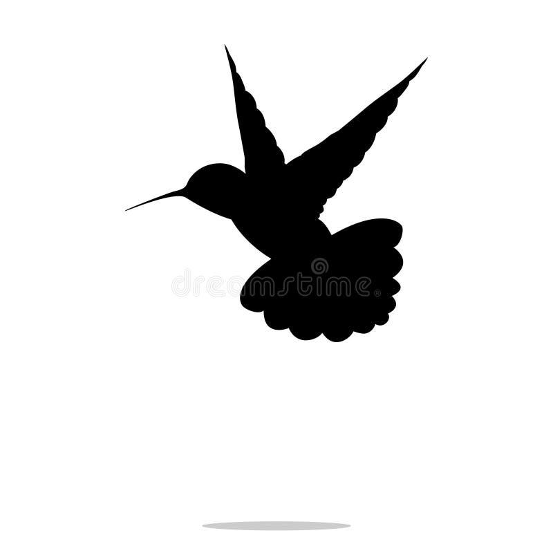 Μαύρο ζώο πουλιών colibri σκιαγραφιών κολιβρίων απεικόνιση αποθεμάτων