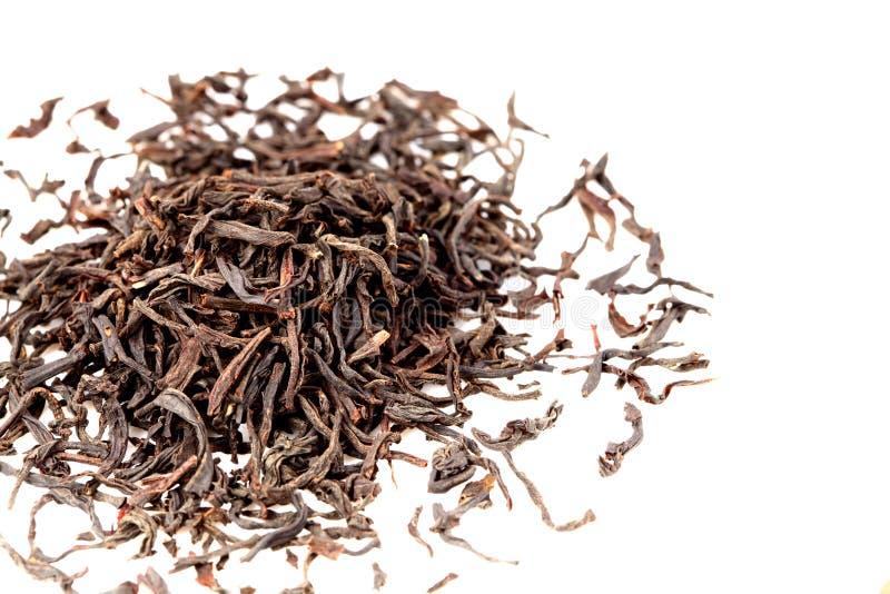 μαύρο ινδικό τσάι στοκ εικόνες