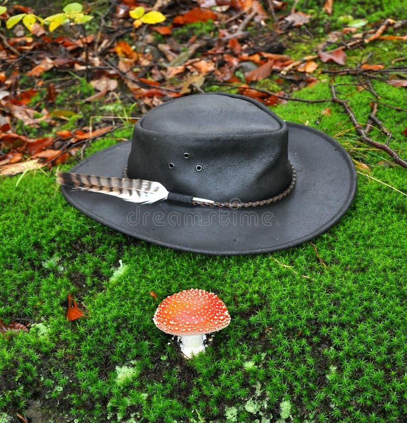 Download μαύρο καπέλο στοκ εικόνα. εικόνα από αυστραλοί, ριψοκινδυνεμμένο - 17050289