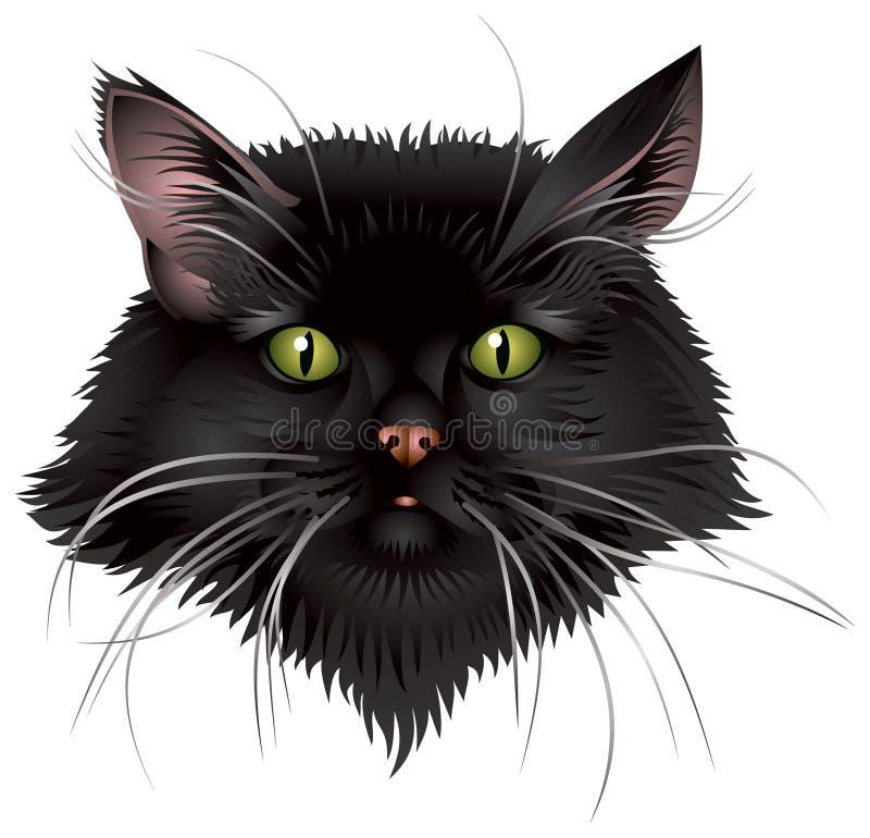 μαύρο κεφάλι γατών διανυσματική απεικόνιση