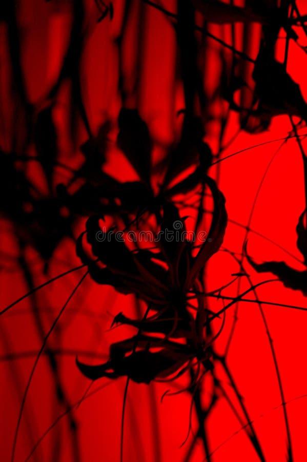 μαύρο κόκκινο abstration στοκ εικόνες