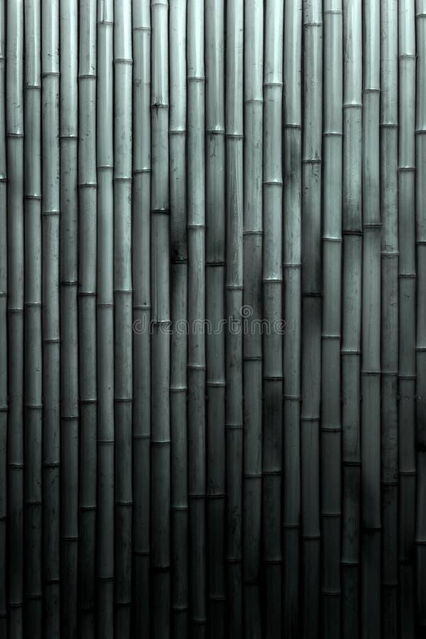 μαύρο λευκό μπαμπού ανασκό& στοκ φωτογραφία