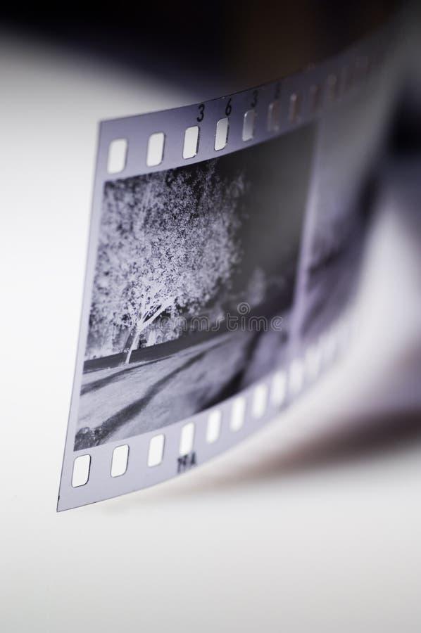 μαύρο λευκό ταινιών στοκ εικόνες