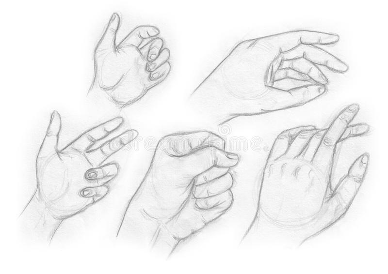 μαύρο λευκό χεριών διανυσματική απεικόνιση