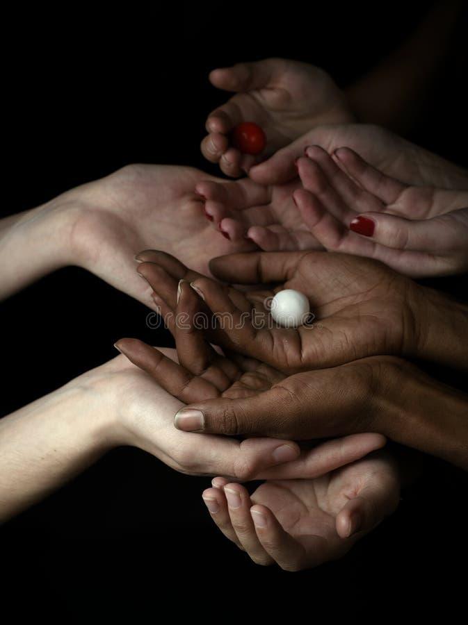 μαύρο λευκό χεριών στοκ εικόνα