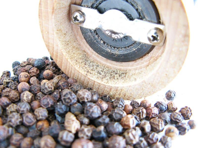 μαύρο πιπέρι στοκ εικόνα με δικαίωμα ελεύθερης χρήσης