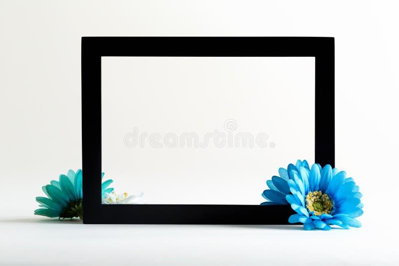 Μαύρο πλαίσιο οικότροφων με το μπλε λουλούδι στοκ φωτογραφίες με δικαίωμα ελεύθερης χρήσης