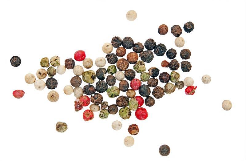 μαύρο πράσινο peppercorns κόκκινο άσπ στοκ εικόνες με δικαίωμα ελεύθερης χρήσης