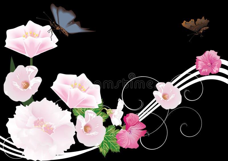 μαύρο ροζ λουλουδιών π&epsilo απεικόνιση αποθεμάτων