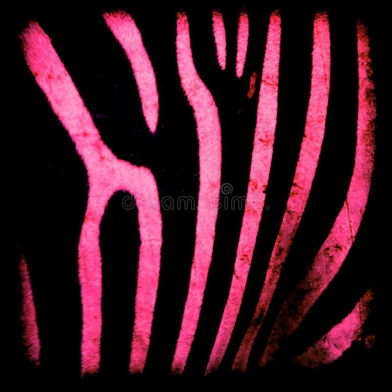 μαύρο ρόδινο με ραβδώσεις στοκ εικόνες με δικαίωμα ελεύθερης χρήσης