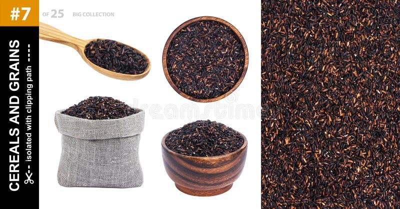 Μαύρο ρύζι που απομονώνεται στο άσπρο υπόβαθρο, συλλογή στοκ εικόνες με δικαίωμα ελεύθερης χρήσης