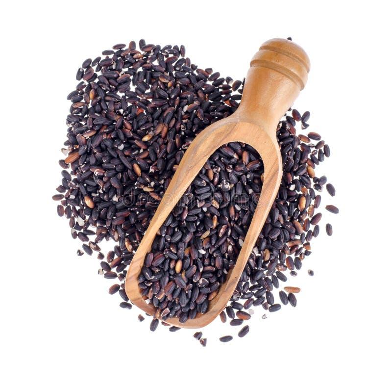 Μαύρο ρύζι σε ξύλινη κουκούλα, απομονωμένο σε λευκό φόντο, υγιεινό φαγητό στοκ εικόνα με δικαίωμα ελεύθερης χρήσης
