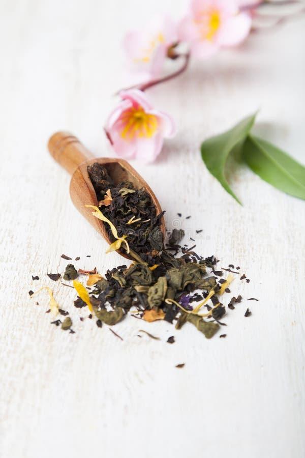 Μαύρο τσάι με τα πέταλα λουλουδιών στοκ εικόνες