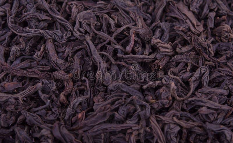 μαύρο τσάι φύλλων ανασκόπησης στοκ εικόνα