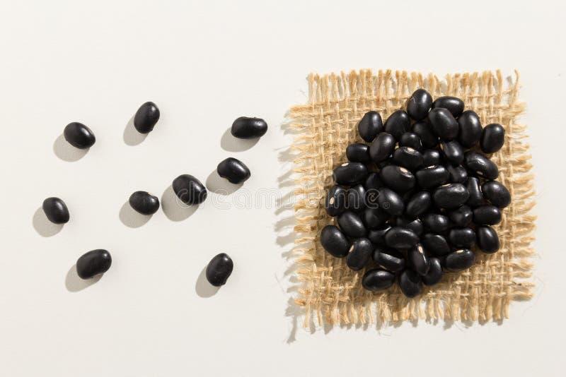 Μαύρο όσπριο φασολιών χελωνών Κλείστε επάνω των σιταριών που είναι εξαπλωμένων στο λευκό στοκ εικόνα με δικαίωμα ελεύθερης χρήσης