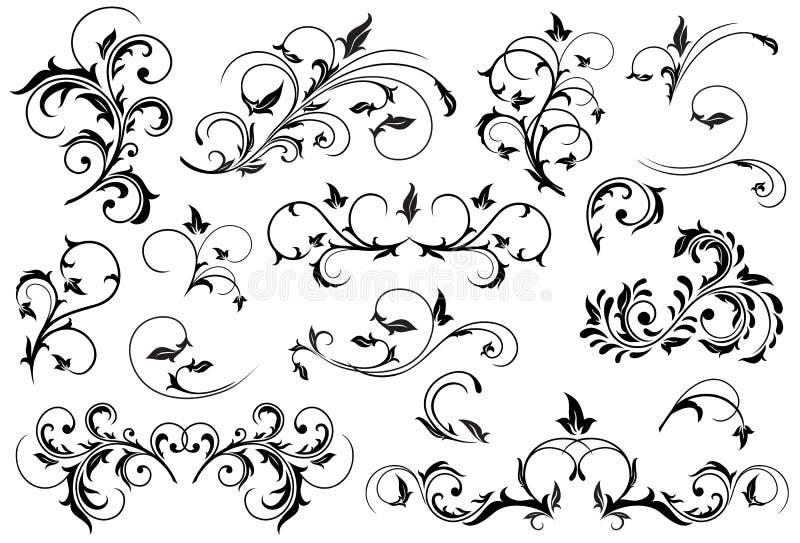 μαύρο floral σύνολο στοιχείων διανυσματική απεικόνιση