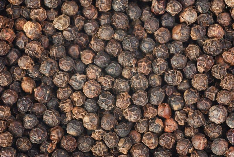 Μαύρο makro πιπεριών στοκ φωτογραφίες