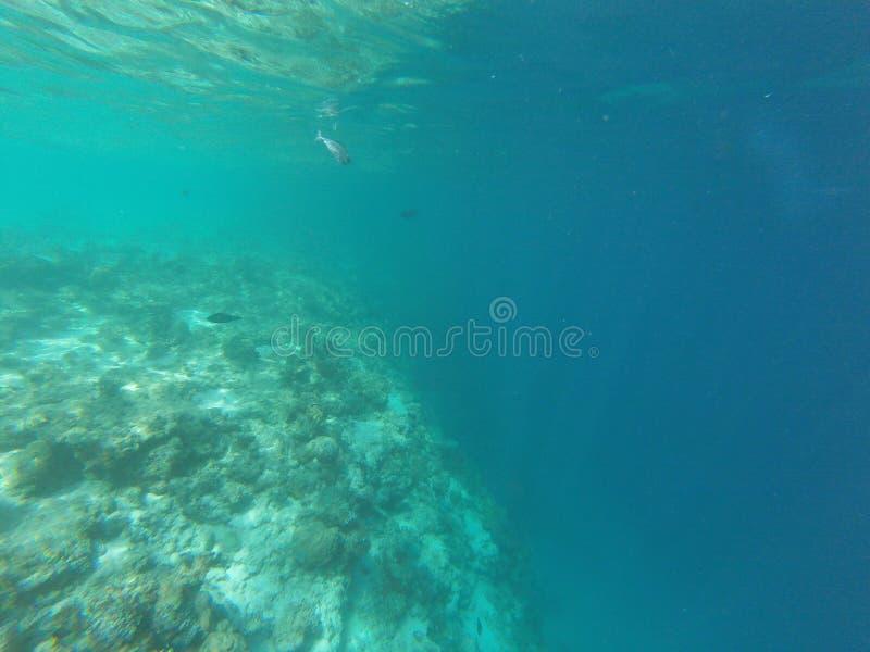 Μαλδίβες στοκ φωτογραφίες με δικαίωμα ελεύθερης χρήσης