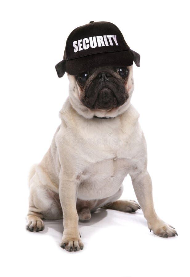 Μαλαγμένος πηλός σκυλιών φρουράς στοκ φωτογραφίες με δικαίωμα ελεύθερης χρήσης