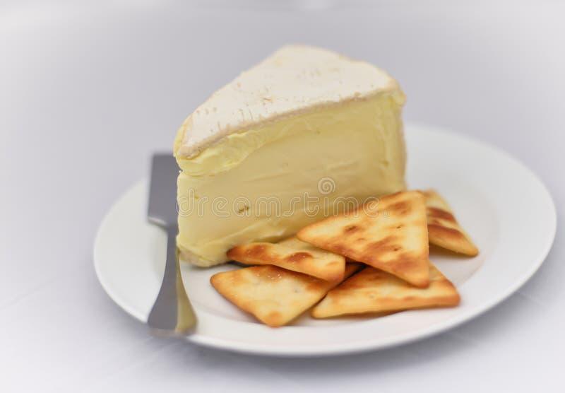 Μαλακό τυρί και κροτίδες στο λευκό στοκ εικόνες με δικαίωμα ελεύθερης χρήσης
