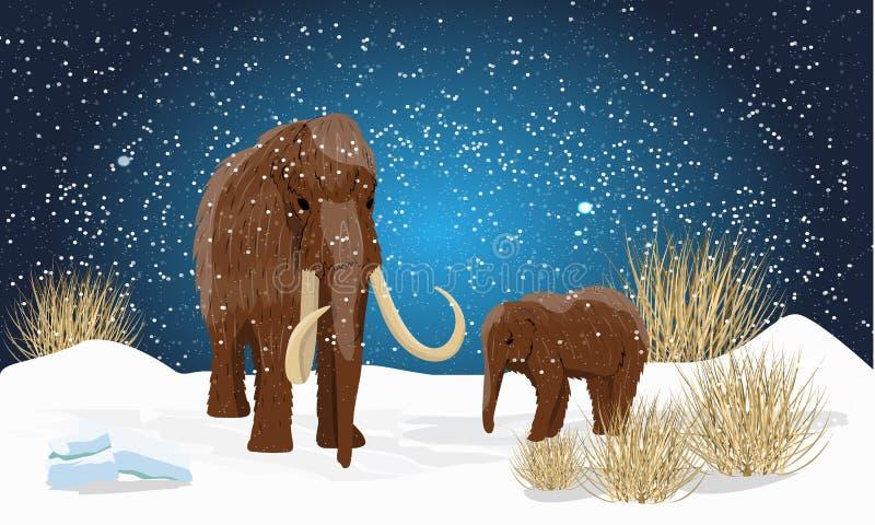 Μεγάλα μάλλινα μαμούθ και cub στην πεδιάδα στο χιόνι Νύχτα με τα αστέρια διανυσματική απεικόνιση