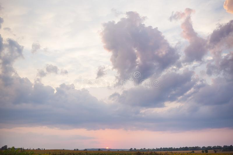 Μεγάλα σύννεφα, όμορφο ηλιοβασίλεμα πέρα από έναν γεωργικό πράσινο τομέα στοκ εικόνες