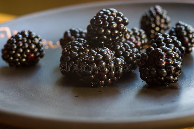 Μεγάλα juicy μούρα βατόμουρων σε ένα κεραμικό πιάτο στοκ εικόνες