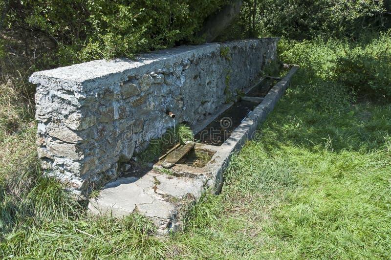 Μεγάλη ανάβλυση γλυκού νερού από την παλαιά πηγή κοντά στο δρόμο στο δάσος στο βουνό Sredna Gora στοκ εικόνες με δικαίωμα ελεύθερης χρήσης