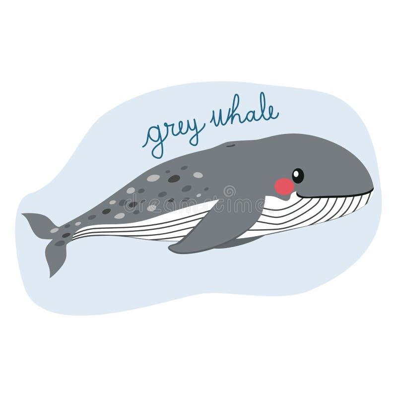 Μεγάλη γκρίζα φάλαινα διανυσματική απεικόνιση