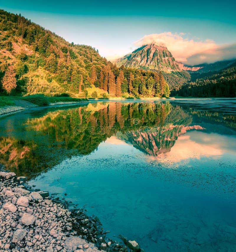 Μεγάλη θερινή άποψη της λίμνης Obersee στοκ φωτογραφίες