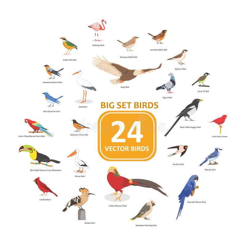 Μεγάλη καθορισμένη διανυσματική απεικόνιση πουλιών στοκ εικόνες με δικαίωμα ελεύθερης χρήσης