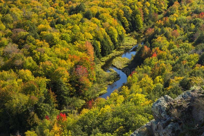 Μεγάλη κοιλάδα ποταμών κυπρίνων στοκ φωτογραφία
