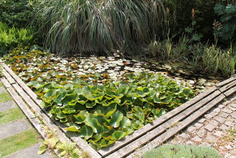 Μεγάλη λίμνη κήπων στοκ εικόνα με δικαίωμα ελεύθερης χρήσης