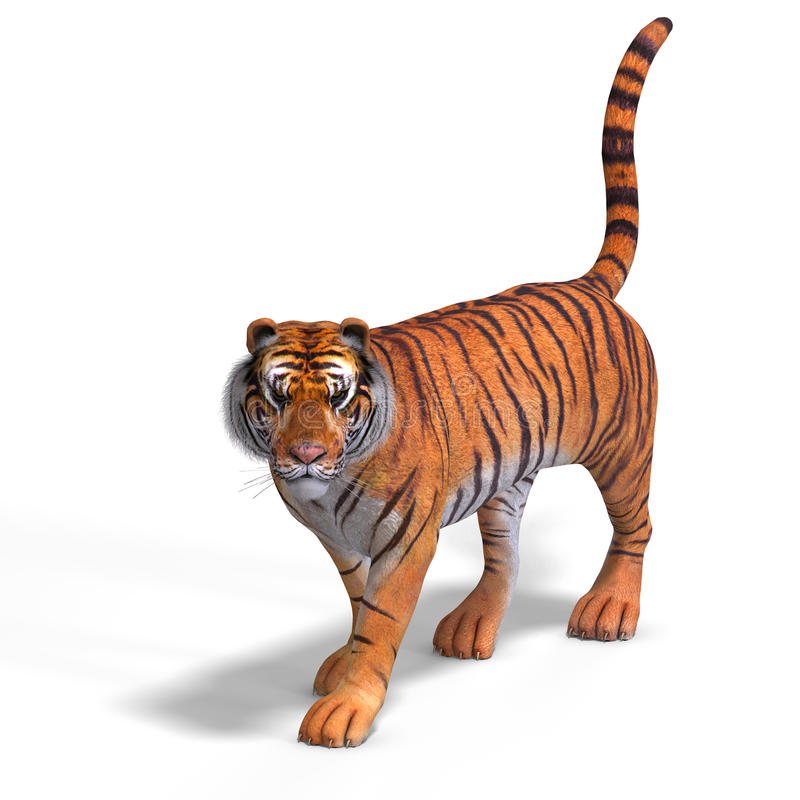 μεγάλη τίγρη γατών απεικόνιση αποθεμάτων