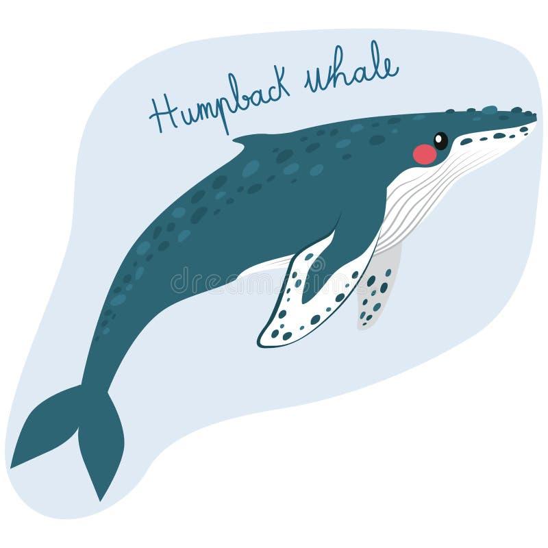 Μεγάλη φάλαινα Humpback διανυσματική απεικόνιση