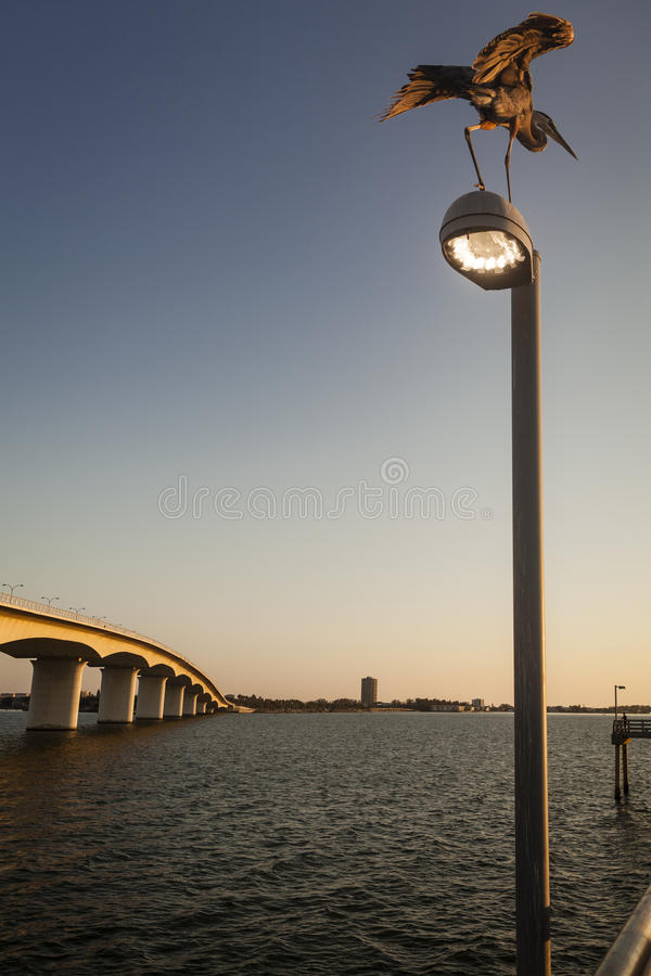 Μεγάλοι ερωδιός & αποβάθρα στο ηλιοβασίλεμα στοκ φωτογραφία με δικαίωμα ελεύθερης χρήσης