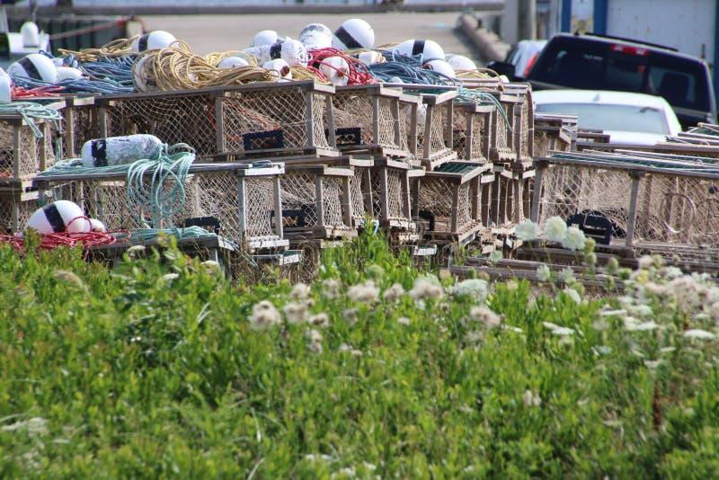 Μεγάλοι σωροί των παγίδων αστακών στοκ φωτογραφία με δικαίωμα ελεύθερης χρήσης
