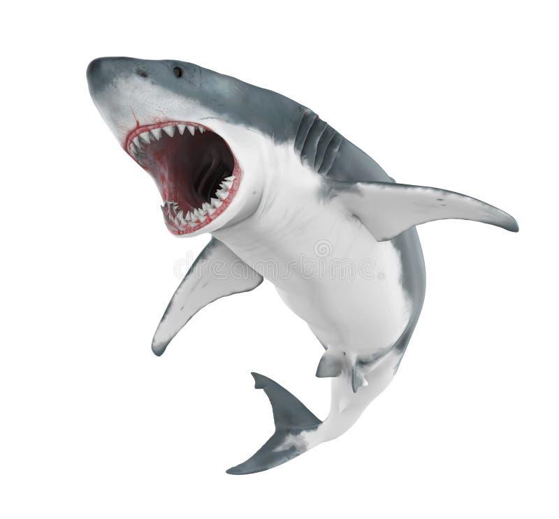 Μεγάλος άσπρος καρχαρίας που απομονώνεται απεικόνιση αποθεμάτων