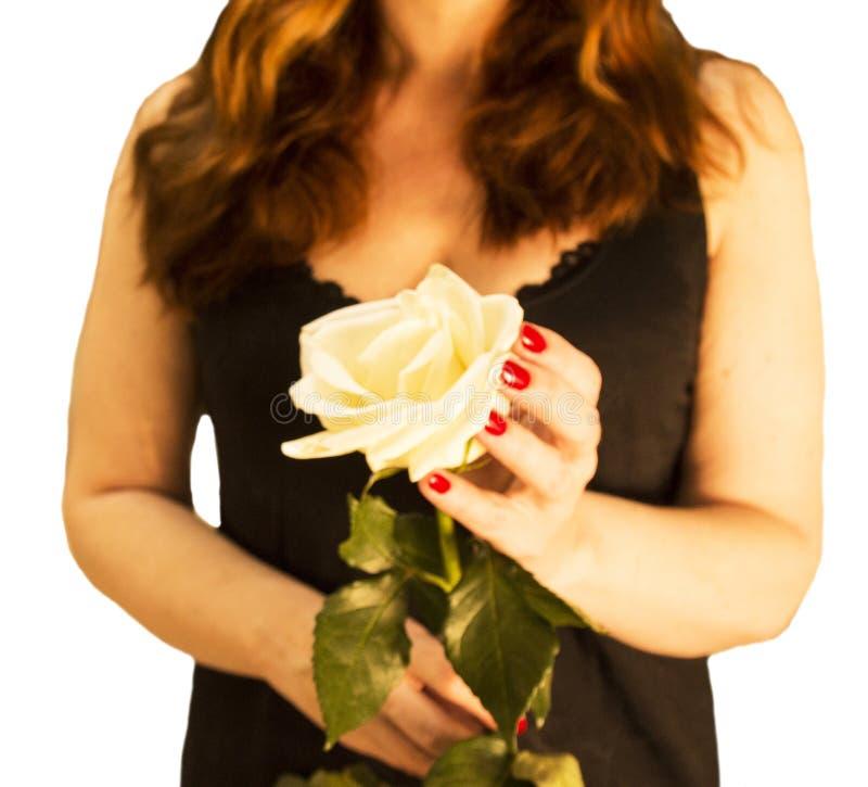 Μεγάλος ένας άσπρος αυξήθηκε στα χέρια ενός κοκκινομάλλους κοριτσιού σε ένα μαύρο φόρεμα στοκ φωτογραφίες