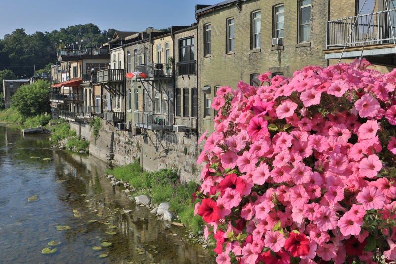 Μεγάλος ποταμός στο Παρίσι, Οντάριο, Καναδάς με τα λουλούδια στο μέτωπο στοκ εικόνες