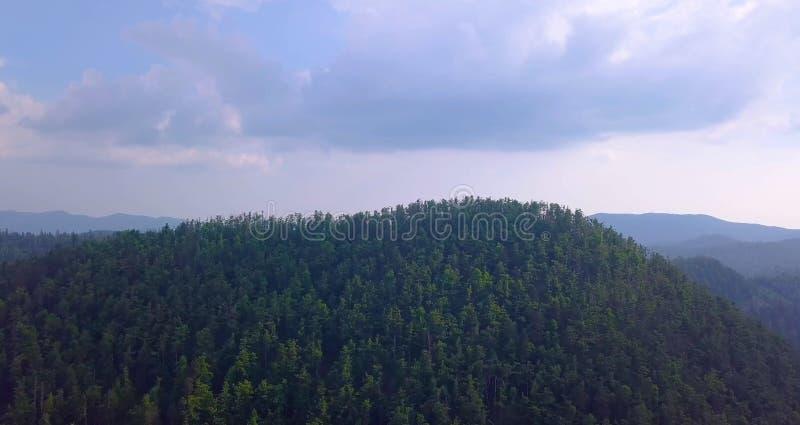 Μεγάλο έδαφος για ταξίδια στη Σιβηρία το καλοκαίρι στοκ εικόνα