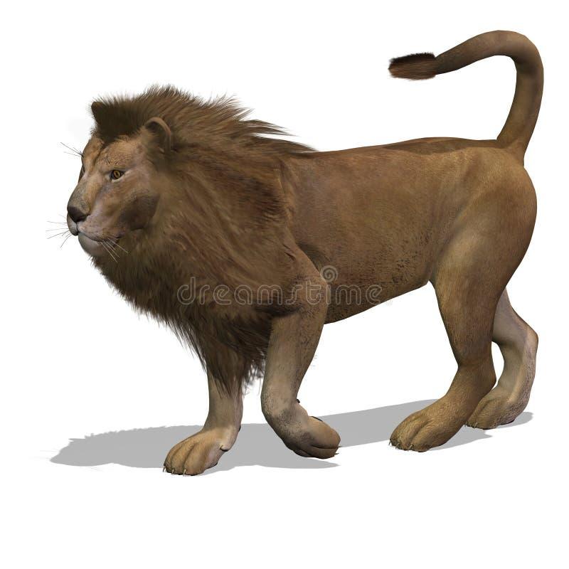 μεγάλο αρσενικό λιονταρ ελεύθερη απεικόνιση δικαιώματος