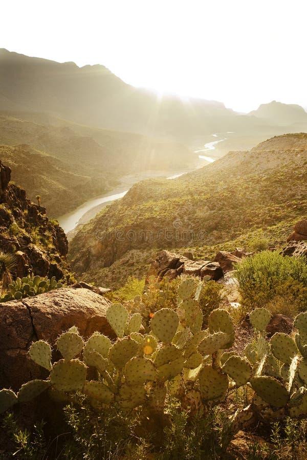 Μεγάλο εθνικό πάρκο κάμψεων, Τέξας στοκ φωτογραφίες με δικαίωμα ελεύθερης χρήσης