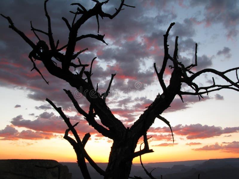 μεγάλο ηλιοβασίλεμα φα& στοκ φωτογραφίες με δικαίωμα ελεύθερης χρήσης