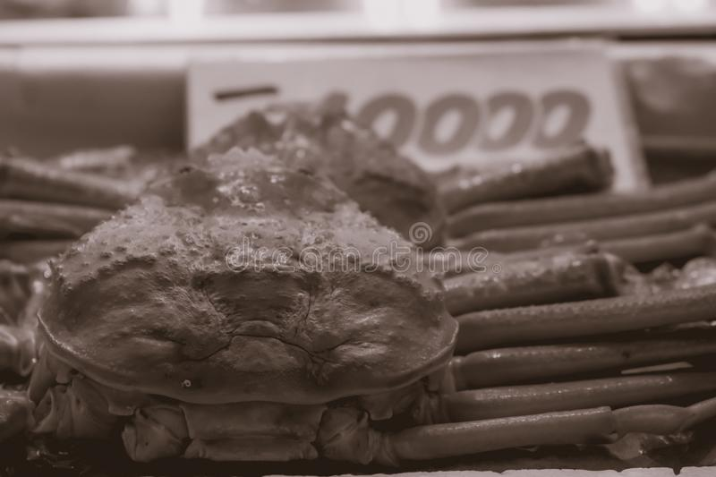 Μεγάλο καβούρι που πωλείται στην αγορά ψαριών Tsukiji στο Τόκιο Ιαπωνία στοκ φωτογραφία με δικαίωμα ελεύθερης χρήσης