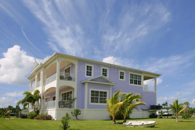 μεγάλο κυπαρίσσι everglades Φλώρι& στοκ εικόνες με δικαίωμα ελεύθερης χρήσης