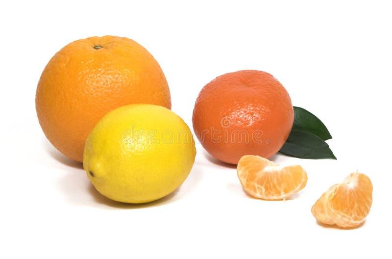 Μεγάλο πορτοκάλι, tangerines, tangerine φέτες, λεμόνι, πράσινο φύλλο στοκ εικόνες με δικαίωμα ελεύθερης χρήσης
